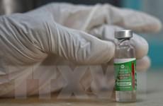 Các nước châu Á-TBD nhận vaccine COVID-19 của Ấn Độ trong tháng 10