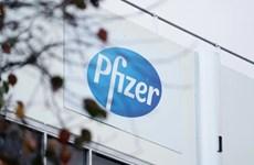 Pfizer thử nghiệm lâm sàng vaccine mRNA phòng cúm mùa