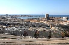 Liban lại tiếp tục đình chỉ điều tra về vụ nổ ở Cảng Beirut