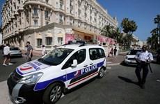 """Tây Ban Nha bắt nghi phạm là thành viên băng cướp """"Pink Panthers"""""""