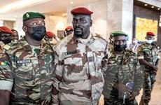 Đại tá Mamady Doumbouya tuyên thệ nhậm chức Tổng thống lâm thời Guinea