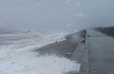 Xuất hiện 2-3 xoáy thuận nhiệt đới trên Biển Đông trong tháng 10