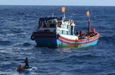 Nghệ An: Khẩn trương tìm kiếm ngư dân rơi xuống biển khi đánh bắt cá