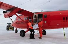 Anh vận chuyển vaccine tới Nam Cực tiêm phòng cho các nhà nghiên cứu