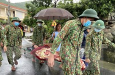Quảng Nam: Vượt sóng cấp 6 đưa bệnh nhân trên đảo vào đất liền cấp cứu