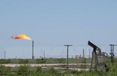 IEA: Khủng hoảng than đá và khí đốt thúc đẩy nhu cầu dầu mỏ toàn cầu