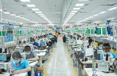 Việt Nam được đánh giá có nền tảng kinh tế mạnh, ngày càng phát triển