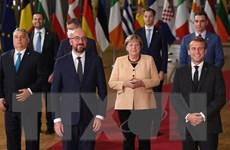 """""""EU thiếu vắng bà Angela Merkel như Paris không có tháp Eiffel"""""""
