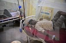 Số ca sốt xuất huyết tăng mạnh tại thủ đô New Dehli của Ấn Độ