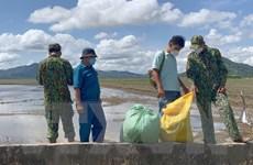 An Giang: Bắt giữ hơn 21kg nghi là cần sa vận chuyển từ Campuchia
