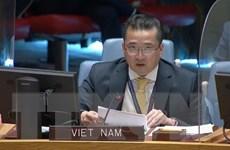 Việt Nam tích cực tham gia hoạt động gìn giữ hòa bình của LHQ