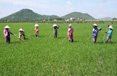 Các tổ chức xã hội dân sự góp phần xóa đói giảm nghèo