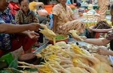 Campuchia phát hiện thêm trường hợp nhiễm virus H5N1