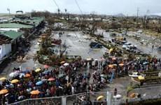 Cứu trợ người Việt bị ảnh hưởng bão Haiyan ở Philippines