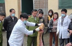 Hà Tĩnh bắt giữ xe khách vận chuyển 2 tấn thịt lợn thối