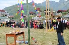 Lên Cao nguyên đá Đồng Văn xem lễ hội Gầu Tào