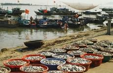Khánh Hòa hạn chế các nghề khai thác hải sản ven bờ