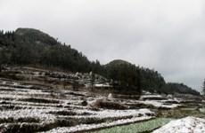 Tuyết và băng giá lại phủ trắng cao nguyên đá Đồng Văn