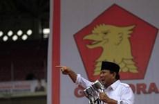 Nhiều cử tri Indonesia lưỡng lự dù hạn bầu cử đến gần