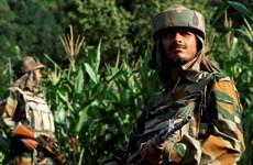Binh sỹ Ấn Độ và Pakistan lại đấu súng ở Kashmir
