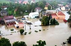 Lũ lụt ở Cộng hòa Séc gây thiệt hại hàng triệu USD