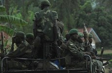 Bùng phát giao tranh tại biên giới Rwanda và Congo