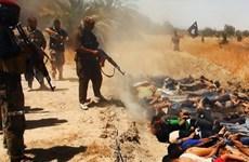 Israel đề nghị giúp các nước Arab đối phó phiến quân Hồi giáo