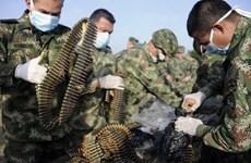 Hải quan Colombia tịch thu kho vũ khí lớn của FARC