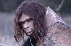 Phát hiện mới về chế độ ăn của người hang động Neanderthal
