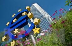 IMF: Kinh tế Eurozone tăng trưởng chậm chạp năm 2014