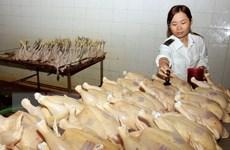 Hà Nội xử phạt gần 680 cơ sở vi phạm về an toàn thực phẩm