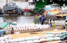 Thúc đẩy sản xuất, tiêu thụ nông sản ở Đồng bằng sông Cửu Long