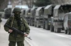 NATO họp thượng đỉnh giữa lúc căng thẳng với Nga leo thang