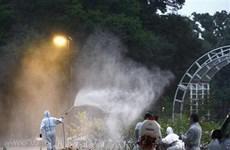 Muỗi ở Công viên Yoyogi mang mầm bệnh sốt xuất huyết