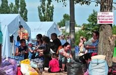 Nhiều người dân tị nạn Ukraine bắt đầu rời Nga trở về nhà