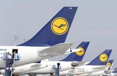 Hãng Lufthansa hủy nhiều chuyến bay đường dài do đình công