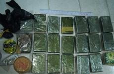 Mở rộng điều tra vụ án thu giữ 13 bánh heroin tại Nam Định