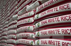 Gạo Thái Lan và Campuchia giành danh hiệu gạo ngon nhất thế giới
