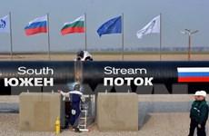 """Nga, Serbia và EU đều thiệt hại nặng nếu dừng """"Dòng chảy phương Nam"""""""