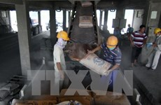 Xuất khẩu ximăng vượt mốc kế hoạch khoảng 4 triệu tấn