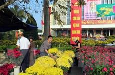 Tràn ngập những sắc màu rực rỡ ngày Xuân ở chợ hoa Cố đô Huế