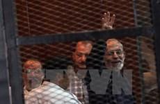 Ai Cập cách chức 41 thẩm phán do ủng hộ Anh em Hồi giáo
