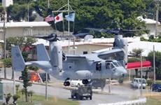 Chính quyền tỉnh Okinawa yêu cầu ngừng dự án xây căn cứ Mỹ
