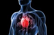 Phát minh thiết bị mới dự báo sớm nguy cơ mắc bệnh tim mạch