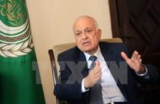 Các nước Arab thúc đẩy kế hoạch thành lập Liên minh Hải quan