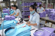 Nghị viện EU đánh giá mức độ sẵn sàng của Việt Nam trong ký FTA