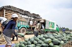 Bộ Công Thương: Lạng Sơn tạo mọi điều kiện xuất khẩu nông sản