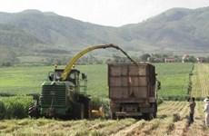 ADB giúp Phú Yên thực hiện dự án phát triển nông thôn tổng hợp