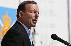 Australia cân nhắc tước quyền bầu cử của chiến binh nước ngoài
