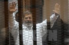 Ai Cập: MB tổ chức tuần hành phản đối án tử hình ông Morsi